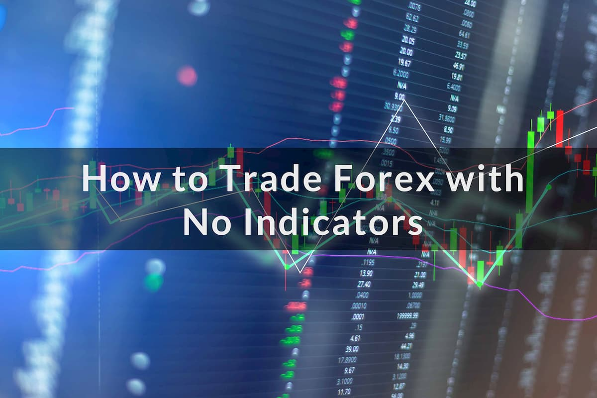 7 Best Forex Indicators For [Beginners & Experienced Traders]