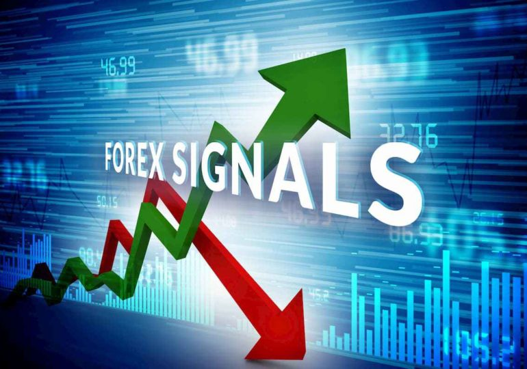 What You Should Know About Forex Signal Providers