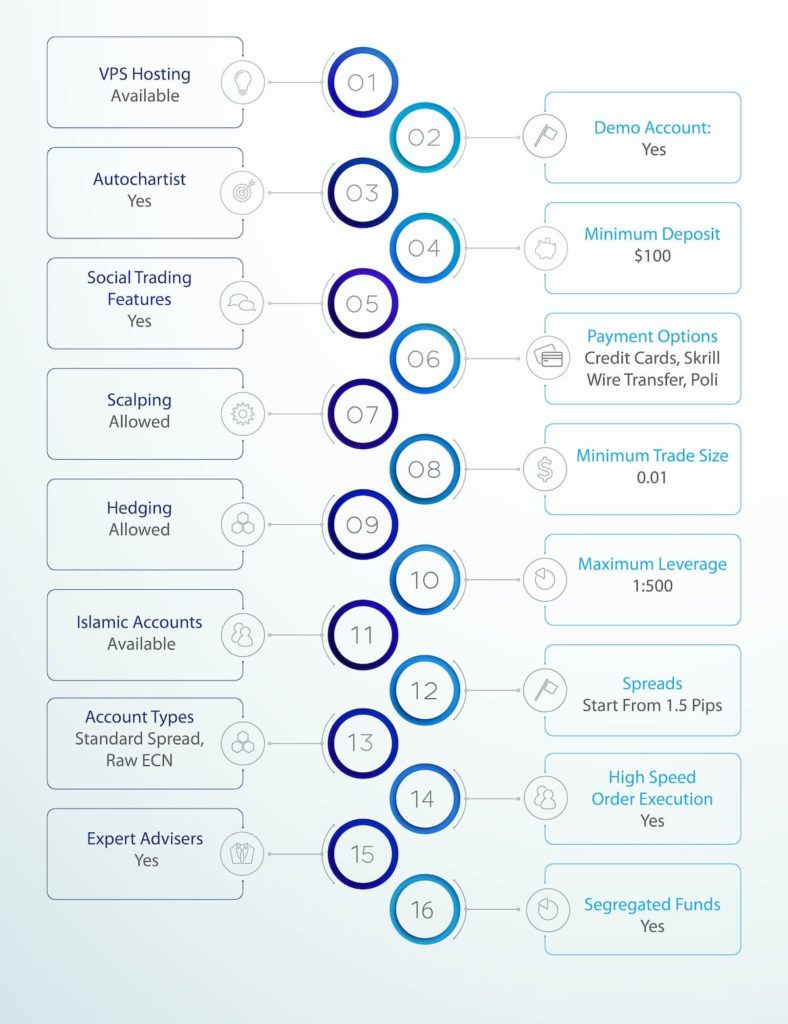 Blueberry Markets Services Infographic
