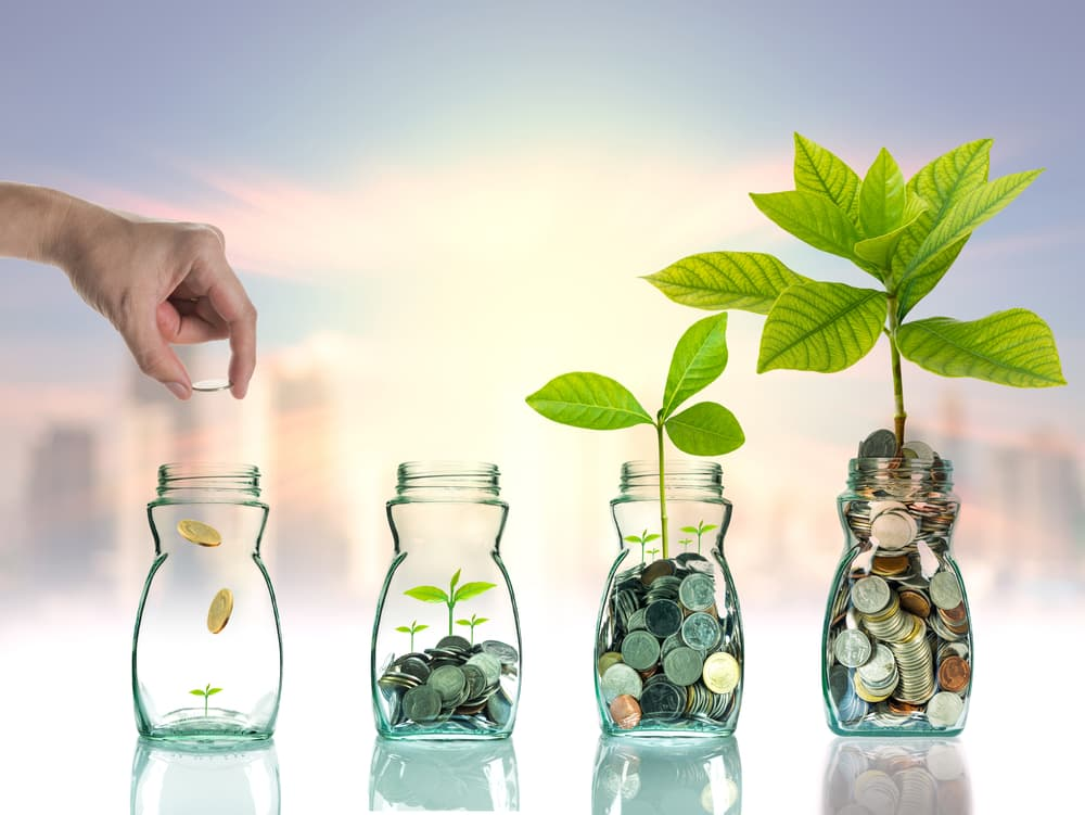 Investment Products symbolized by growing plants in jars of money