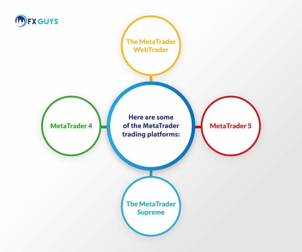Metatrader Platforms - Infographic